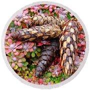 Pine Cones Art Print Botanical Garden Baslee Troutman Round Beach Towel