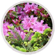 Pine Conifer Pink Azaleas 30 Summer Azalea Flowers Giclee Art Prints Baslee Troutman Round Beach Towel