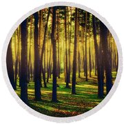 Pine Forest In La Boca Del Asno-segovia-spain Round Beach Towel