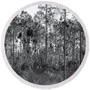 Pine Land In B/w Round Beach Towel by Rudy Umans