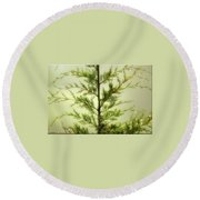 Pine Shower Round Beach Towel