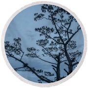 Pine Tree Antigua Guatemala Round Beach Towel