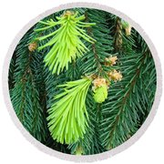 Pine Tree Branches Art Prints Conifer Forest Baslee Troutman Round Beach Towel
