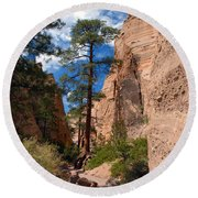 Pine Tree Canyon Round Beach Towel