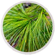 Pine Tree Needles Round Beach Towel