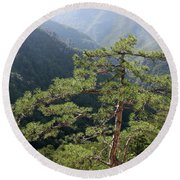 Pine Tree On Mountain Landscape Round Beach Towel