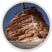 Pine Tree On Sandstone Round Beach Towel