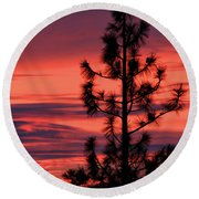 Pine Tree Sunrise Round Beach Towel