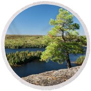 Pine Tree With A View Round Beach Towel