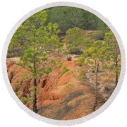Pine Trees And Forest Round Beach Towel