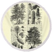 Pine Trees Study Black And White  Round Beach Towel