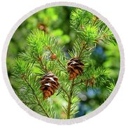 Pinecones Round Beach Towel