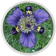 Pinewoods Lily Round Beach Towel