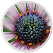 Pink African Daisy Detail Round Beach Towel
