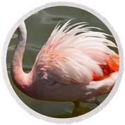 Pink And Proud Round Beach Towel