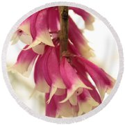 Pink And White Bells Round Beach Towel