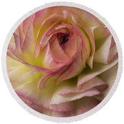 Pink And White Ranunculus Round Beach Towel