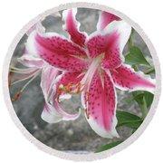 Pink And White Stargazer Lily In A Garden Round Beach Towel