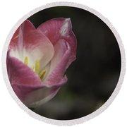 Pink And White Tulip 04 Round Beach Towel