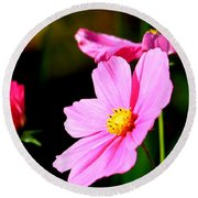 Pink And Yellow Cosmo Round Beach Towel