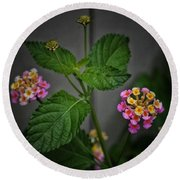 Pink And Yellow Flowers Round Beach Towel