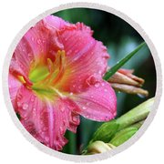 Pink And Yellow Lily After Rain Round Beach Towel