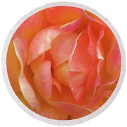 Pink And Yellow Rose Round Beach Towel