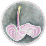 Pink Anthurium Round Beach Towel