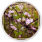 Pink Aplle Blossoms Of Spring Time Round Beach Towel