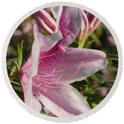 Pink Azalea Beauty Round Beach Towel