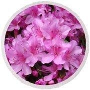 Pink Azaleas Summer Garden 6 Azalea Flowers Giclee Art Prints Baslee Troutman Round Beach Towel