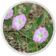 Pink Bindweed Round Beach Towel