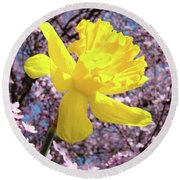 Pink Blossom Spring Trees Yellow Daffodil Flower Baslee Troutman Round Beach Towel