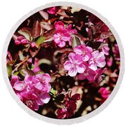 Pink Blossoms 031015 Round Beach Towel