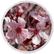 Pink Blossoms 033014c Round Beach Towel