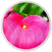 Pink Calla Lily Macro Flower Art Print Lilies Baslee Troutman Round Beach Towel