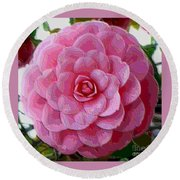 Pink Camellia Dream  Round Beach Towel