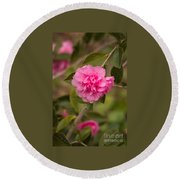 Pink Camellia 2 Round Beach Towel