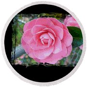 Pink Camellias With Fence And Framing Round Beach Towel