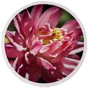 Pink Columbine Round Beach Towel