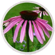 Pink Cone Flowers Round Beach Towel