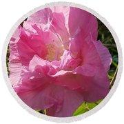 Pink Confederate Rose Round Beach Towel