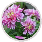 Pink Dahlia Flowers Round Beach Towel