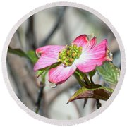 Pink Dogwood Round Beach Towel by Kerri Farley