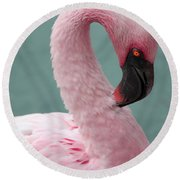 Pink Flamingo Profile 2 Round Beach Towel