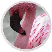 Pink Flamingo Profile Round Beach Towel