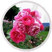 Pink Floribunda Roses Round Beach Towel