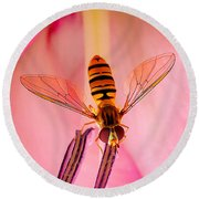 Pink Flower Fly Round Beach Towel