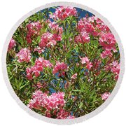 Pink Flowering Shrub Round Beach Towel