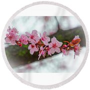 Pink Flowering Tree - Crabapple With Drops Round Beach Towel
